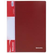 Папка 10 файлов BRAUBERG 0,5 мм.  красная